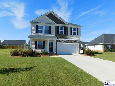 Single Family Home Uc/Show For Back Up: 3069 Red Hawk