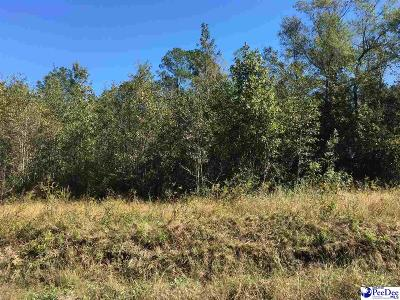 Florence Residential Lots & Land For Sale: Law Road