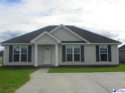 Effingham Single Family Home For Sale: 2153 Pathway Ct
