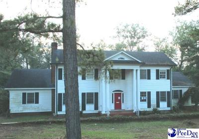 Kingstree Single Family Home For Sale: 801 Woodland Drive