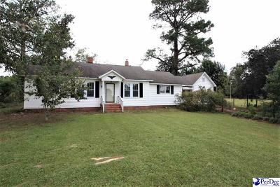 Darlington Single Family Home For Sale: 2232 Timmonsville Hwy