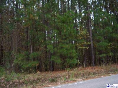 Effingham, Darlington, Darlinton, Florence, Flrorence, Marion, Pamplico, Timmonsville Residential Lots & Land For Sale: Langston Road