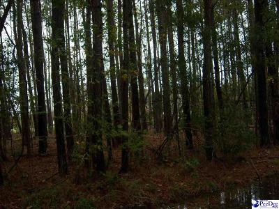 Timmonsville Residential Lots & Land Uc/Show For Back Up: 2710 Pagecole Lane