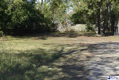 Residential Lots & Land For Sale: 1113 W Sumter St