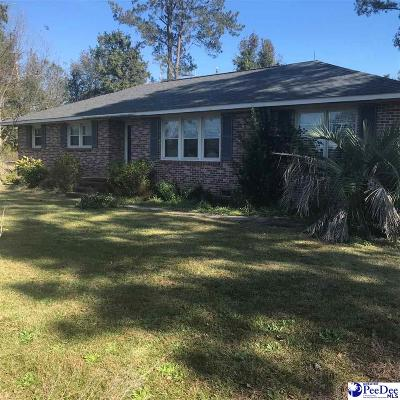 Darlington Single Family Home For Sale: 2421 N Governor Williams Hwy