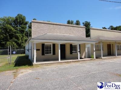 Florence, Flrorence, Marion, Pamplico Commercial For Sale: 1117 E National Cemetery Road