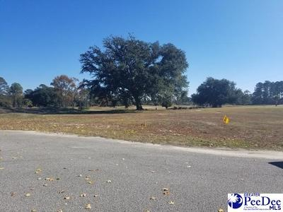 Residential Lots & Land For Sale: West Lake Dtive