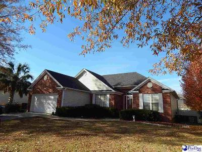 Florence  Single Family Home Uc/Show For Back Up: 2138 Twin Bridge Dr