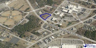 Florence, Flrorence, Marion, Pamplico Commercial Lots & Land New: 1478 Freedom Blvd