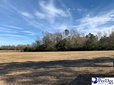 Dillon County Residential Lots & Land For Sale: River Road