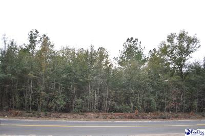 Marion County Residential Lots & Land For Sale: 2.1 Acres Oakridge Road