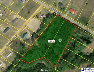 Dillon County Residential Lots & Land For Sale: Lot 84 & 85 Joann Branch Road
