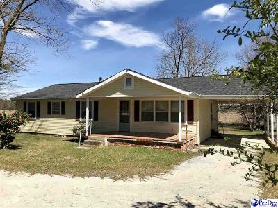 Single Family Home For Sale: 1012 Big Swamp Rd