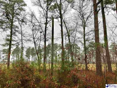 Florence Residential Lots & Land For Sale: 730 Caledonia Ct