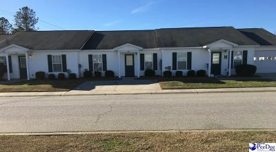 Effingham Condo/Townhouse Uc/Show For Back Up: 3244 Pleasant Valley Circle