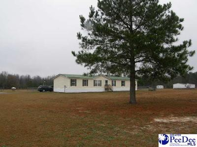Single Family Home Uc/Show For Back Up: 656 Windham Town Road