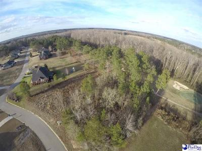 Effingham, Darlington, Darlinton, Florence, Flrorence, Marion, Pamplico, Timmonsville Residential Lots & Land For Sale: 3306 Quaker Ridge