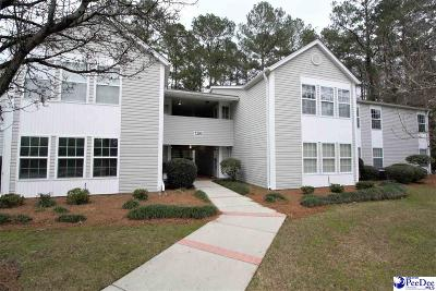 Florence Condo/Townhouse For Sale: 1390 Damon Drive Apt F