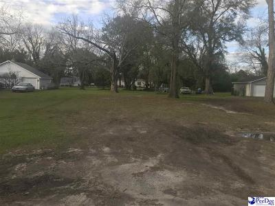 Effingham, Darlington, Darlinton, Florence, Flrorence, Marion, Pamplico, Timmonsville Residential Lots & Land For Sale: 207 Lee Street