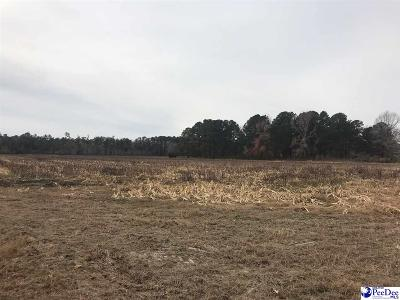 Effingham, Darlington, Darlinton, Florence, Flrorence, Marion, Pamplico, Timmonsville Residential Lots & Land Uc/Show For Back Up: 2817 Southern Aire Rd