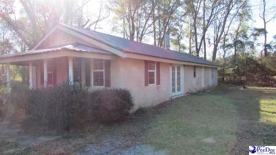 Darlington SC Single Family Home For Sale: $55,000