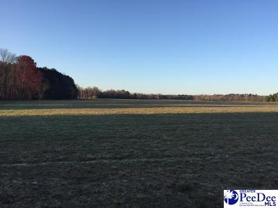 Florence County Residential Lots & Land For Sale: Hollyberry Ln