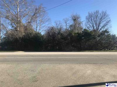 Residential Lots & Land New: 949 S Main Street