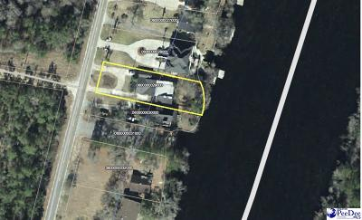 Mullins Single Family Home For Sale: 1060 Fork Retch Dr
