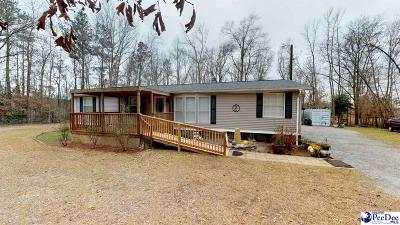 Effingham Single Family Home Uc/Show For Back Up: 2250 Timmons Road