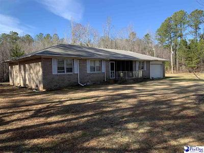 Bennettsville, Blenheim, Cilo, Clio, Mccoll, Tatum, Wallace Single Family Home Uc/Show For Back Up: 2095 Red Bluff Rd