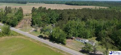Residential Lots & Land For Sale: 58 Acre Penderboro Rd