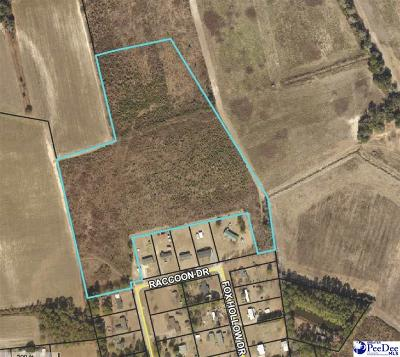 Effingham, Darlington, Darlinton, Florence, Flrorence, Marion, Pamplico, Timmonsville Residential Lots & Land For Sale: Quail Hollow & Raccoon Drive