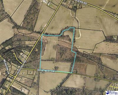 Effingham, Darlington, Darlinton, Florence, Flrorence, Marion, Pamplico, Timmonsville Residential Lots & Land Uc/Show For Back Up: Blue Mist Drive