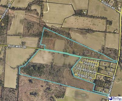 Effingham, Darlington, Darlinton, Florence, Flrorence, Marion, Pamplico, Timmonsville Residential Lots & Land For Sale: Timmonsville Highway