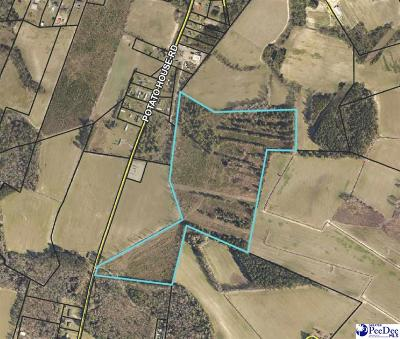 Effingham, Darlington, Darlinton, Florence, Flrorence, Marion, Pamplico, Timmonsville Residential Lots & Land For Sale: 53.18 Acres Potato House Road