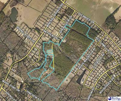 Effingham, Darlington, Darlinton, Florence, Flrorence, Marion, Pamplico, Timmonsville Residential Lots & Land For Sale: Skyview Drive