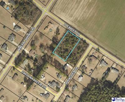Effingham, Darlington, Darlinton, Florence, Flrorence, Marion, Pamplico, Timmonsville Residential Lots & Land Uc/Show For Back Up: Lot 3a Oleander Drive