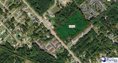 Effingham, Darlington, Darlinton, Florence, Flrorence, Marion, Pamplico, Timmonsville Residential Lots & Land For Sale: 8.39 Acres N Main Street