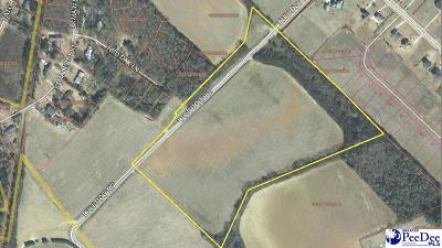 Bennettsville Residential Lots & Land For Sale: Bulldog Road