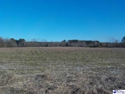 Clio Residential Lots & Land For Sale: Ottis Parrish Road