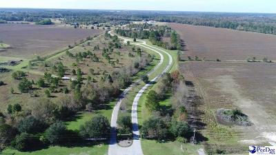 Effingham, Darlington, Darlinton, Florence, Flrorence, Marion, Pamplico, Timmonsville Residential Lots & Land For Sale: 2707 Lazy Lane, Lot 13