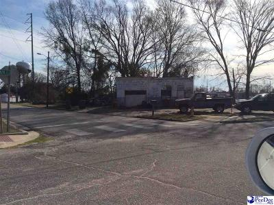 Florence, Flrorence, Marion, Pamplico Commercial Lots & Land For Sale: 408 N Dargan