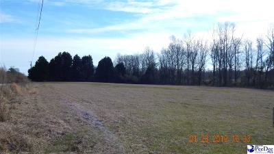Pamplico Residential Lots & Land For Sale: Tbd Shirley Rd And Big Swamp