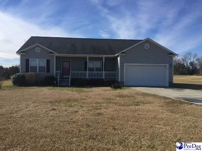 Darlington Single Family Home For Sale: 1068 Oleander Dr.