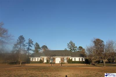 Lake City Single Family Home For Sale: 971 Green Rd.