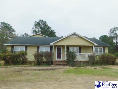 Darlington Single Family Home Uc/Show For Back Up: 264 Horseshoe Bend Dr