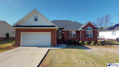 Florence Single Family Home For Sale: 927 Leyland Drive