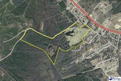 Effingham, Darlington, Darlinton, Florence, Flrorence, Marion, Pamplico, Timmonsville Residential Lots & Land For Sale: Springville Rd.