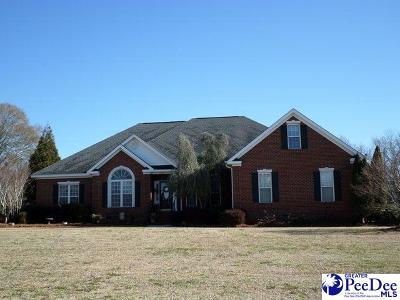 Florence Single Family Home For Sale: 1806 Nighthawk Drive
