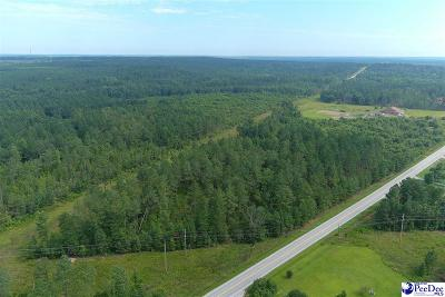 Wallace Residential Lots & Land For Sale: 45 +/- Acre Tract Highway 177